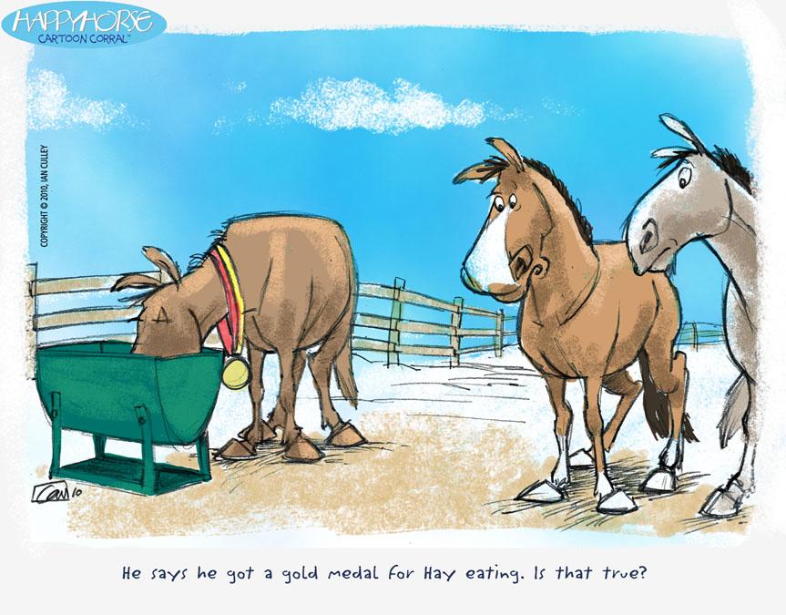 Девушками, смешные лошади картинки карикатуры